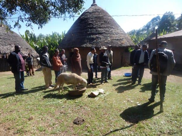 Regional Pastoral Livelihoods Project (RPLRP)